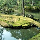 苔寺(西芳寺)