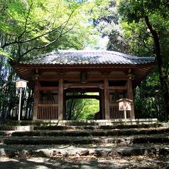 勝持寺(花の寺)